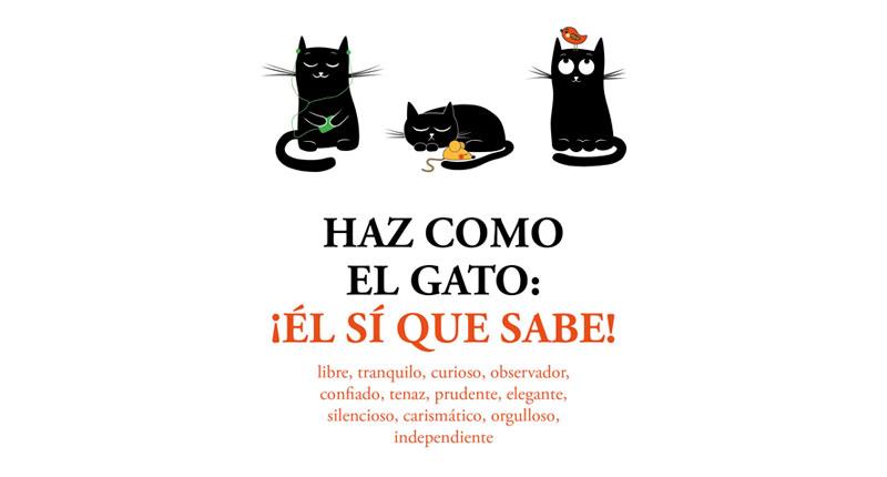 Haz como el gato: ¡Él sí que sabe! (Stéphane Garnier, 2018)