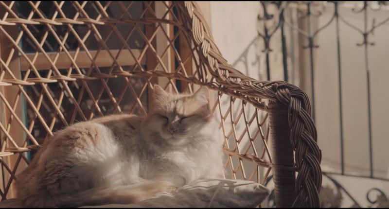 Messura concluye el videoclip de su single 'Dicotomia'