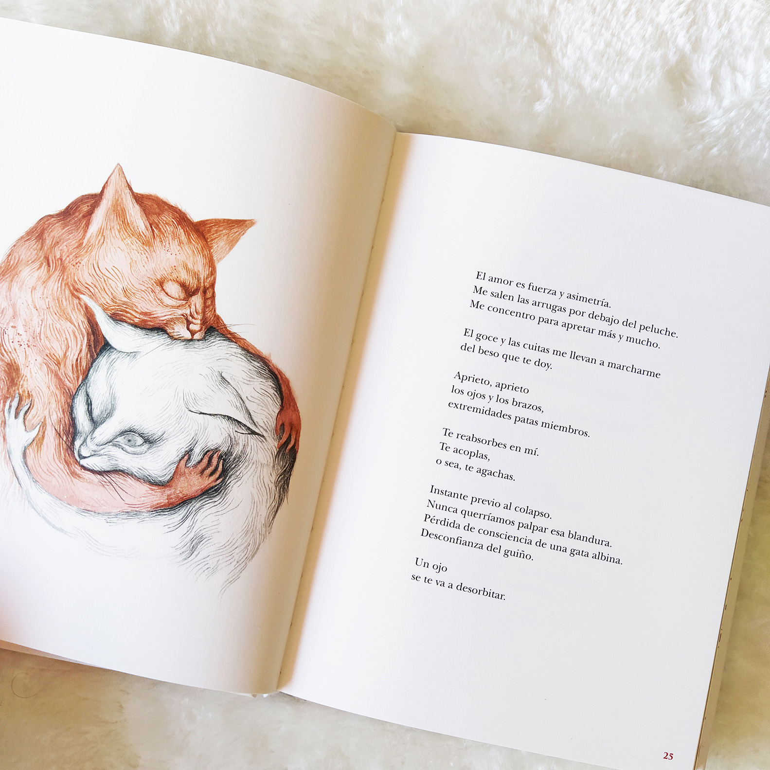 La vida secreta de los gatos (Marta Sanz y Ana Juan, 2020)