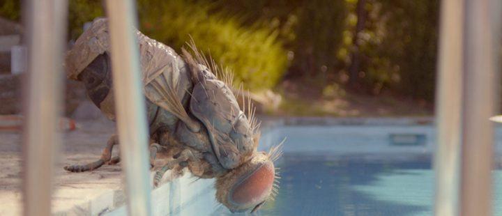 Mandibules, las tribulaciones de dos amigos inseparables y una mosca gigante