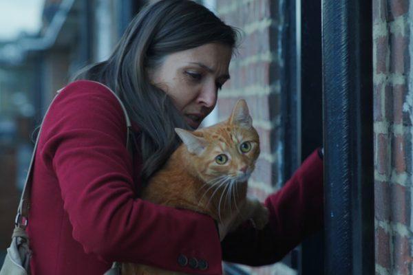 El gato en la pared y la imposibilidad de una nueva vida