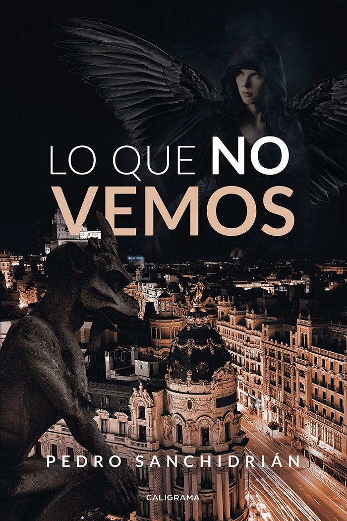 Lo que no vemos (Pedro Sanchidrián, 2019)