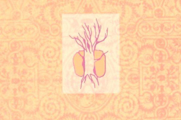 Inmaculada Lergo exhibe su faceta lírica con El cuerpo del veneno